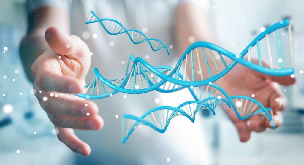генетический тест по эндокринологии